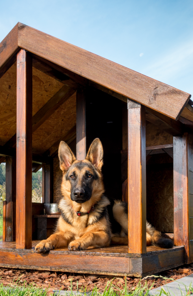 This outdoor cabin ideas is so cute for your furry best friend! You will love these DIY dog house ideas!