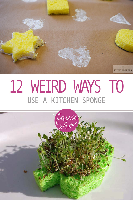 12 Weird Ways to Use A Kitchen Sponge  Uses for Kitchen Sponge, Kitchen Sponge Uses, Sponge Uses, Reuse, Repurpose, Repurpose Projects, Popular Pin #Sponge #Kitchen #SpongeUses
