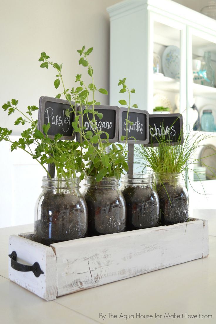 How To Start Herb Gardening Indoors| DIY Ideas, Herb Garden, Herb Garden  Ideas
