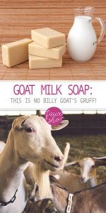 Goat Milk Soap | Goat Milk Soap Ideas | Tips and Tricks for Goat Milk Soap | DIY Goat Milk Soap | Goat Milk | Goat Milk Products