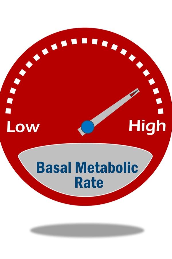 burn | boost metabolism | burn calories | healthy tips | how to burn calories | health | healthy eating | clean eating | metabolism