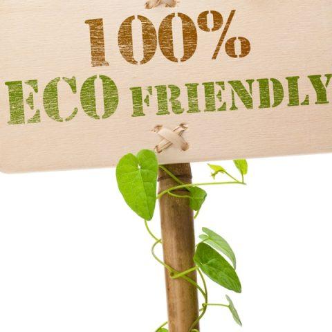 Sustainable Lifestyle Ideas