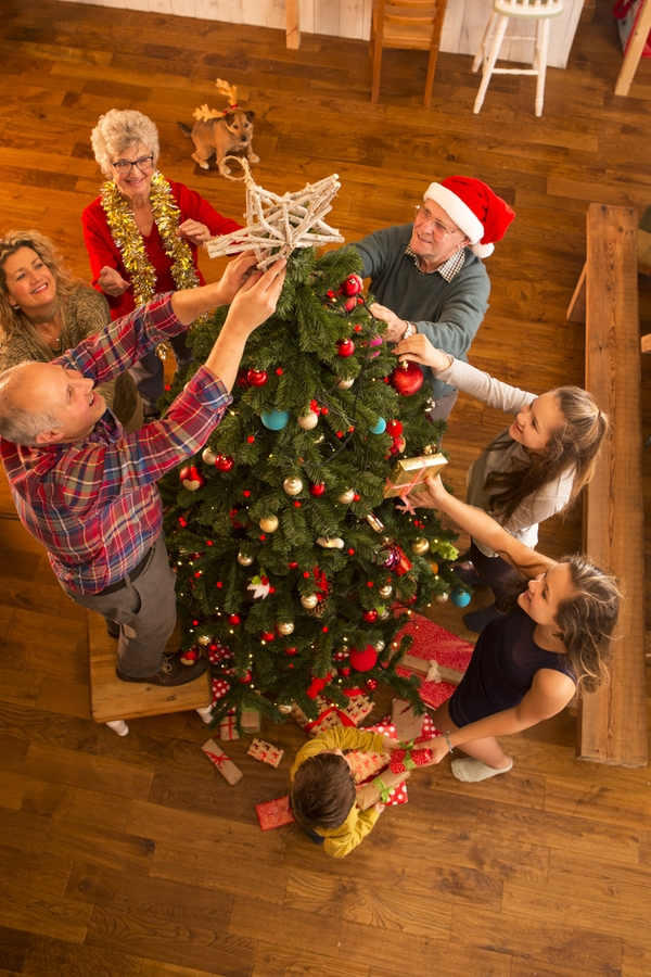 Spending time with your family is one of the best parts of the holidays. These festive family holiday ideas will help bring you guys together.